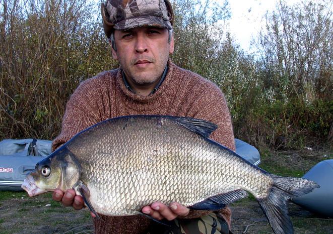 смотреть рыбалку онлайн