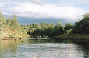 Рыбалка на Ветлуге