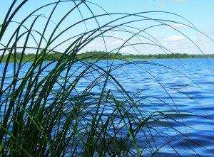 Озера Большой и Малый Иваны