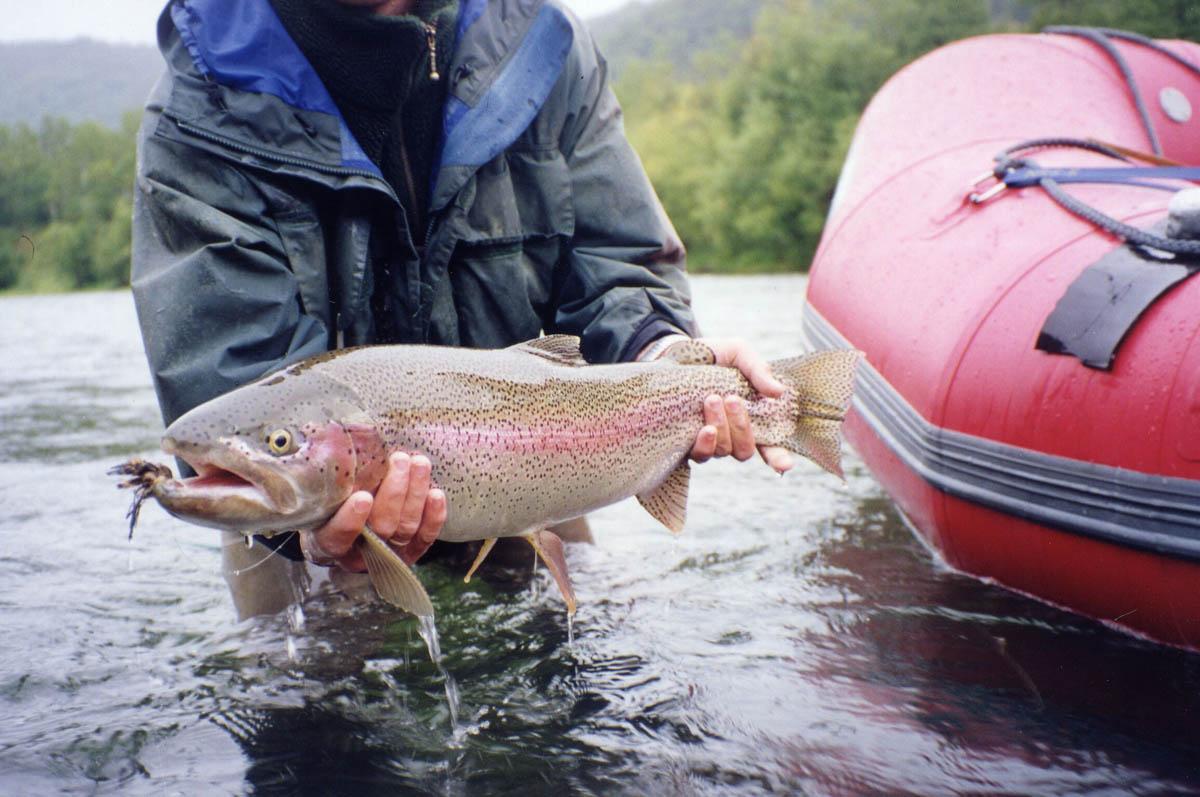 Как ловить озерного лосося