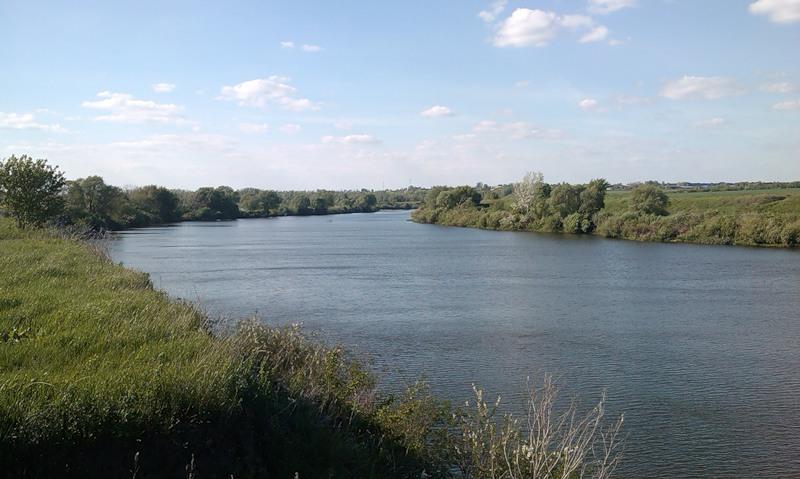 прикорм рыбы на реке видео