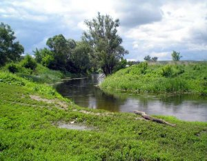 Рыбалка на реке Сосне