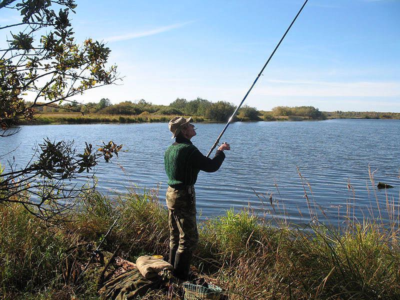 прогноз рыбалки в чечевичах