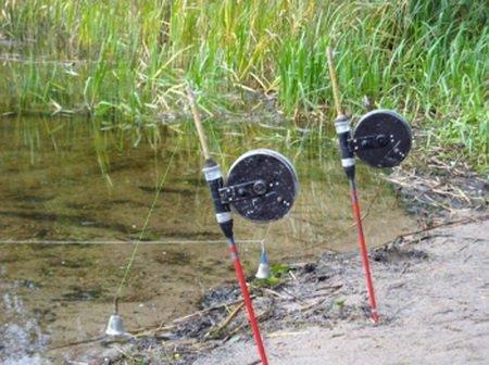 прикорм для ловли леща летом