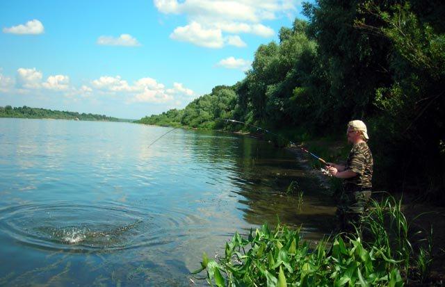 видео про рыбалку бесплатно ока