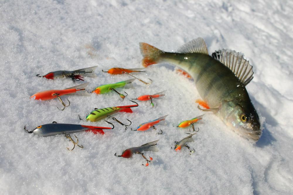 Подлёдная рыбалка на окуня