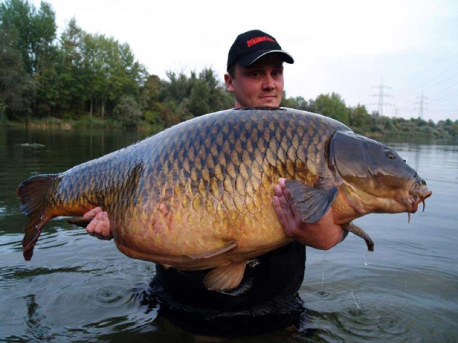 рыбаков с большой рыбой