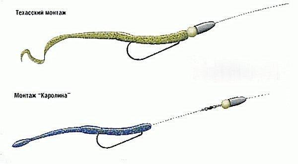техника ловли на каролину техас и отводной поводок