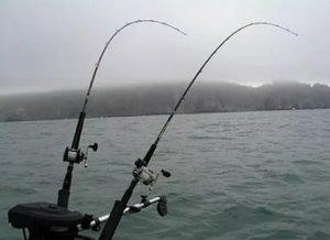 Что такое троллинг в рыбалке?