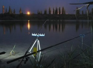 Ночная летняя рыбалка и как к ней подготовиться