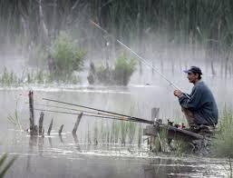 Как погода влияет на клев рыбы