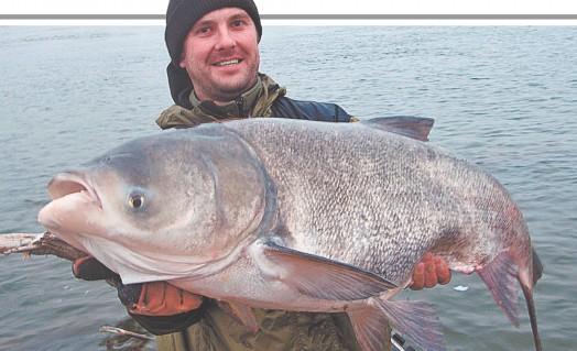 Рыбалка на Ахтубе, золотые деньки!