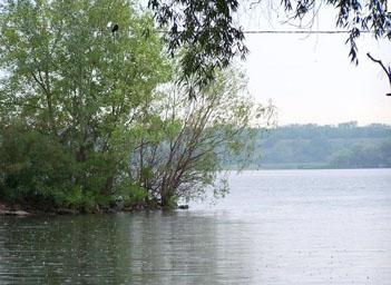 Рыбалка в районе Лысогорки
