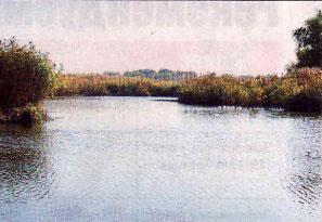 Ворота в Каховское водохранилище