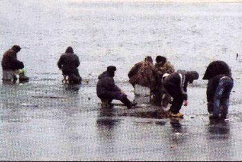 Места отдыха и рыбной ловли
