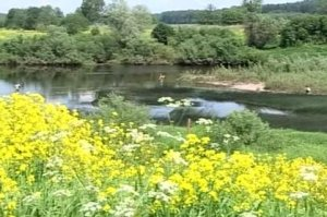 Рыбалка на реке Воря