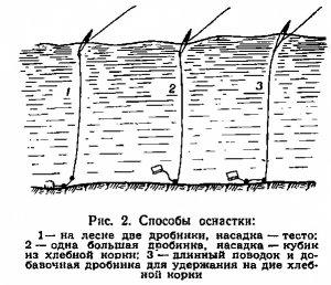 Способы оснастки для ловли крупной плотвы