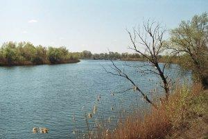 Река Сухая
