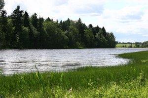 Удача на лесных озерах