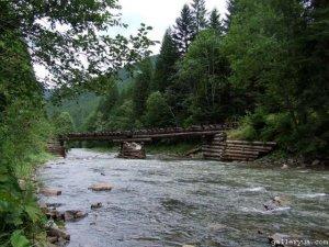 Рыбалка на карпатских реках