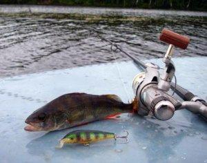 GPS-навигаторы для удачной рыбной ловли