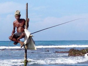 Шри-Ланка рыбалка