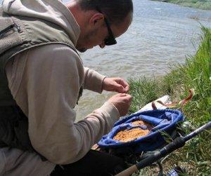 Ужение сазана с использованием кормушки