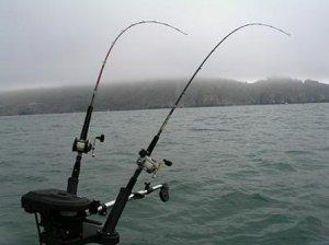 Рыбная ловля на дорожку
