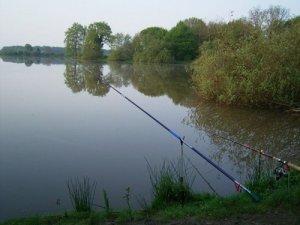 Как выбрать место для рыбалки на поплавок?