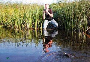 Ловля карася в реке