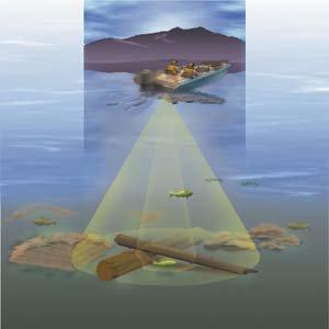 Оборудование для рыбалки и эхолоты