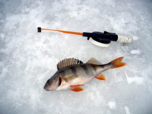 Рыбалка на льду
