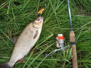Спиннинговая ловля рыбы
