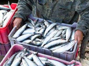 Ловля рыбы на Байкале