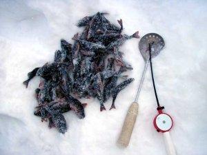 В чем прелесть зимней ловли рыбы