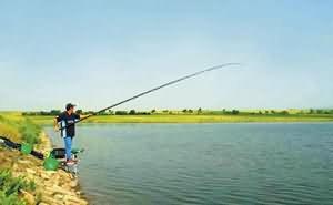 Ловля рыбы удочкой