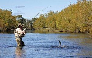 Ловля речной форели