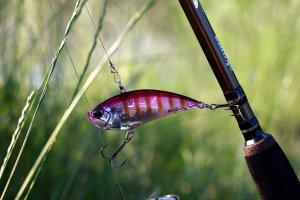 Рыбалка с Realis Vibration