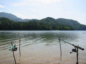 Ловля рыбы во время дождя