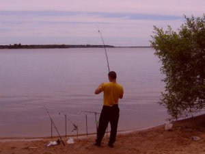 На рыбалку в июле