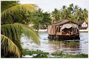 Рыболовное путешествие в Индию