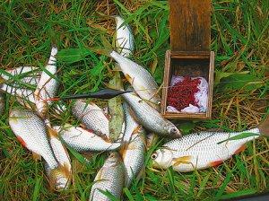 Особенности осенней рыбалки
