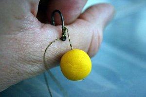 Ловля карпа: приманки и снасти