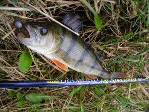 Рыбалка с помощью джига