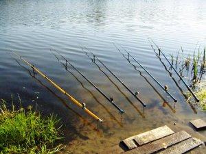 Ловля поплавочной снастью