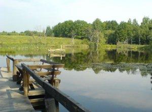 Особенности рыбалки в стоячей воде