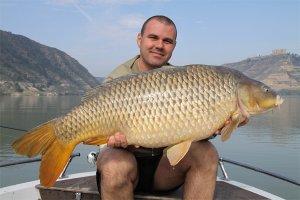 Ловля удивительной рыбы: сазан