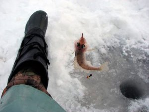 Ловля ерша зимой