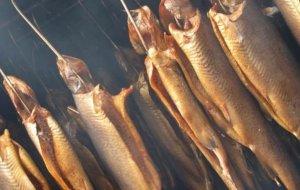 Основные принципы копчения рыбы