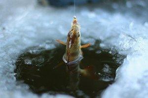 Зимняя рыбалка: лунки, приманки, оснастки